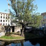 Zustand des Fundaments für das ehemalige Nationaldenkmal Wilhelm I. im Oktober 2014